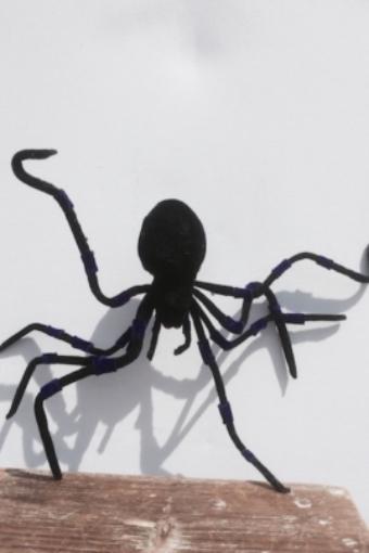 Spinne Riesenspinne Verleih Grusel Halloween Verleih Hamburg Dekoverleih