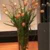 Vasen Verleih Hamburg Deko Verleih Hamburg Glasvase Konische Vase Bodenvase Bühnendekoration Bühnenvase